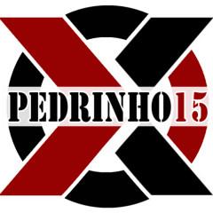 Pedrinho15x