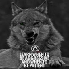 wolf1983