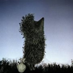 Heghehog