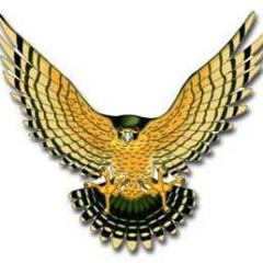 Goldenhawkster