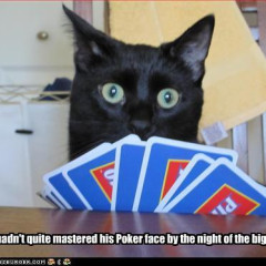 pokerflow666