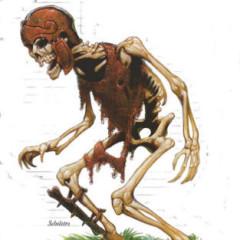 Skeleton92