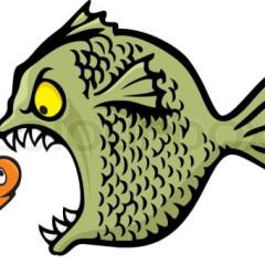 GoldFish88