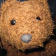 Teddymaci81