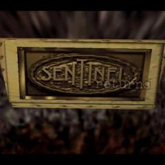 TheSentinel1