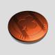 shark778
