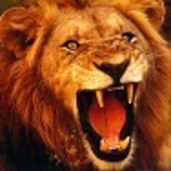 lionvictor