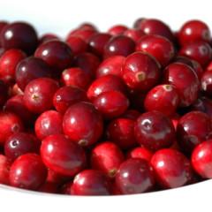 1Cranberries1