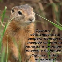 SergeyVik