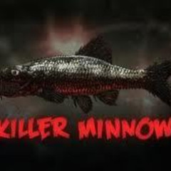 Minnow2Hook