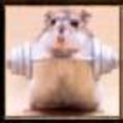 ratoncito75